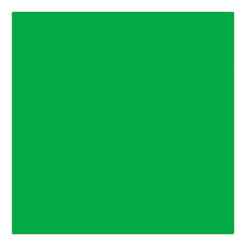 EColour 124 Dark Green Roll